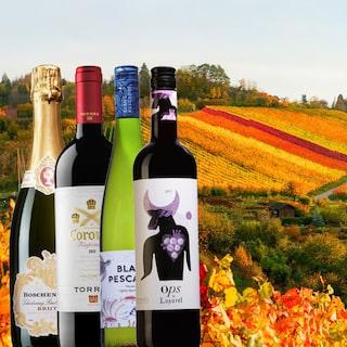röda viner bäst i test