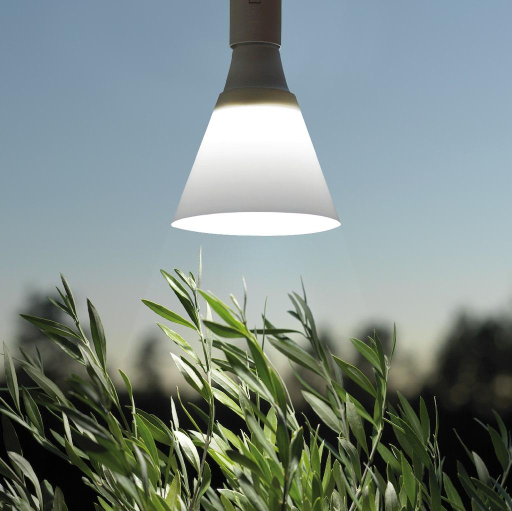 Led-lampa med skärm som riktar ljuset nedåt, 15 W, från Nelson Garden.