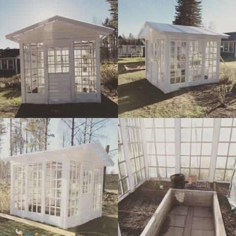 Växthuset är byggt av återbrukade gamla spröjsfönster för 300 kronor.