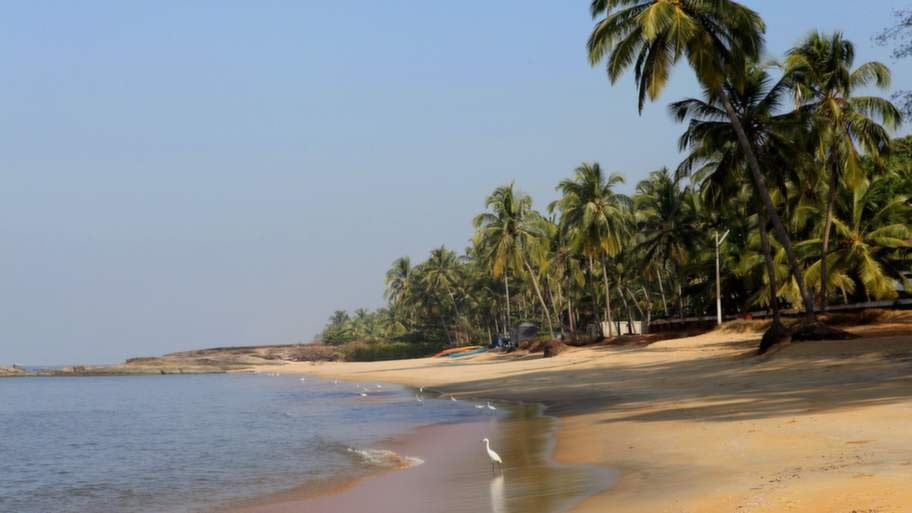 Stranden i Kappad är kantad av höga palmer. Hit kommer indiska familjer på helgerna.