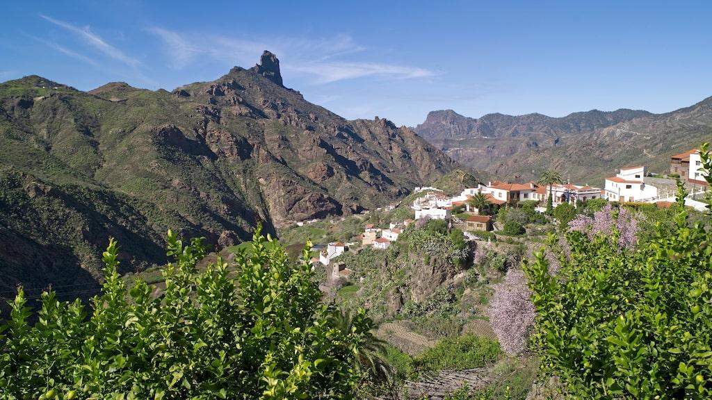 Gran Canaria har mycket varierad natur och fina vandringsleder.