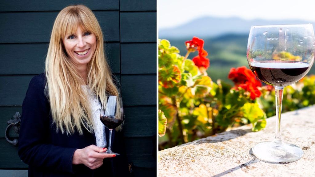 Vinskribent Åsa Johansson om den nya generationen vinmakare på Sicilien.