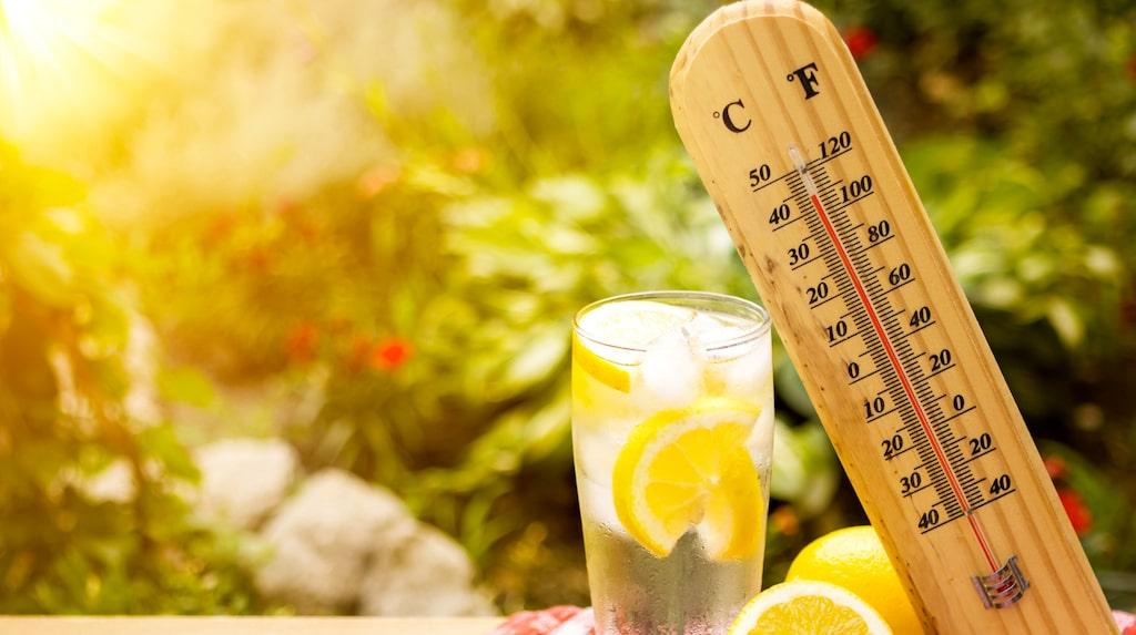 Är värmen olidlig hemma? Här tipsar vi om svalkande maskiner och vad du ska tänka på inför köpet.