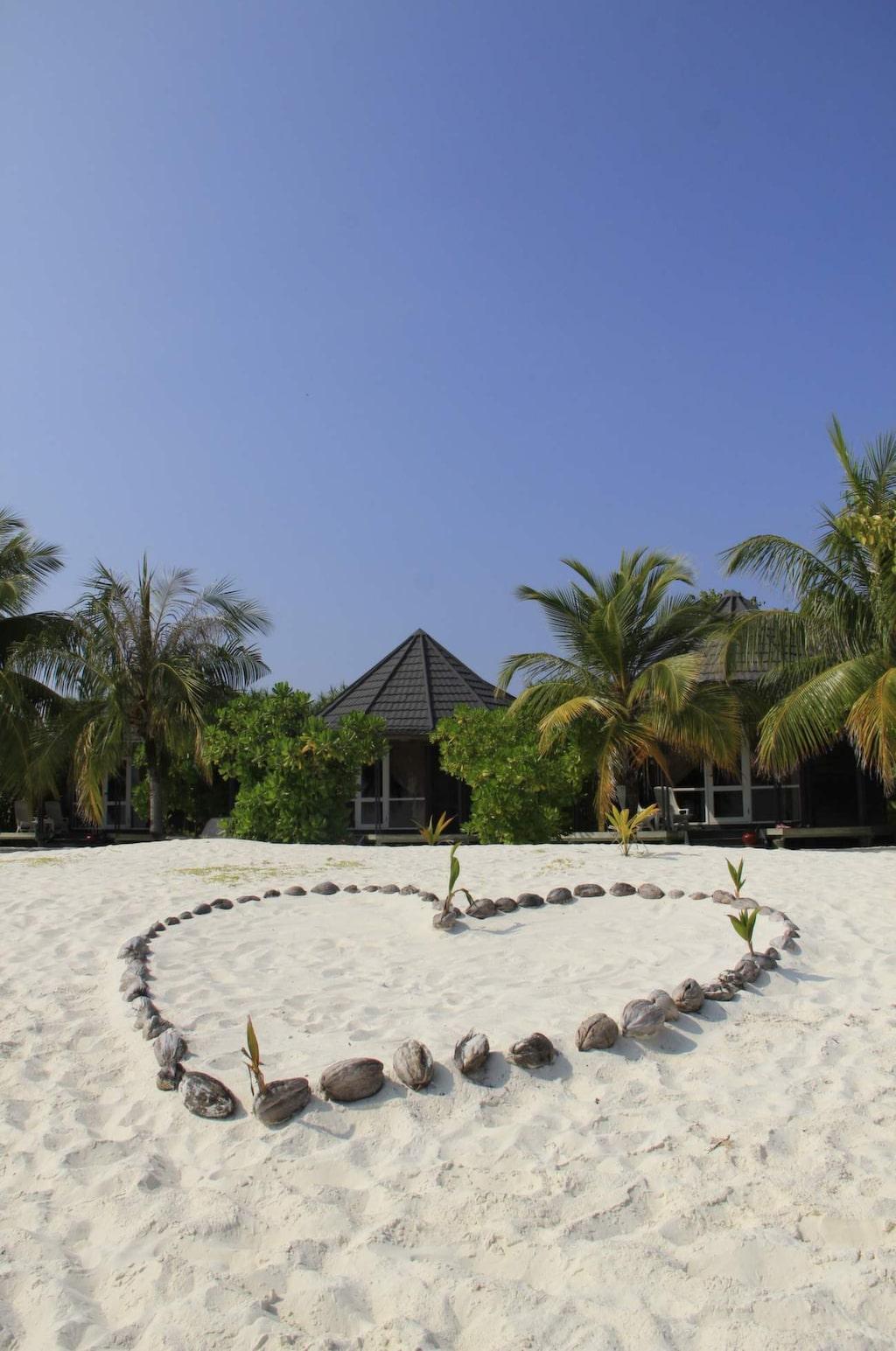 <p>Ett hjärta av kokosnötter pryder stranden.</p>