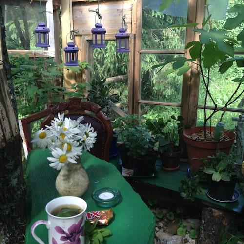 Glashuset är inrett med blommor, lyktor och sitthörna.