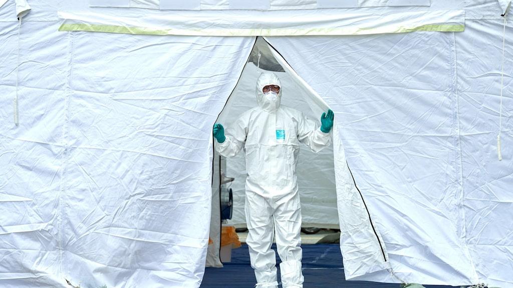 """""""Idag vet experterna inte exakt hur smittsamt eller farligt det nya viruset är"""", skriver Anna Bäsén."""