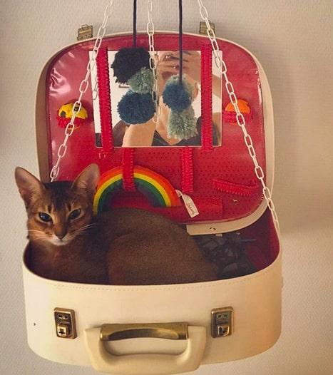 Har du en katt vet du också att de älskar väskor över allt annat så varför inte tillverka en säng av en sådan?