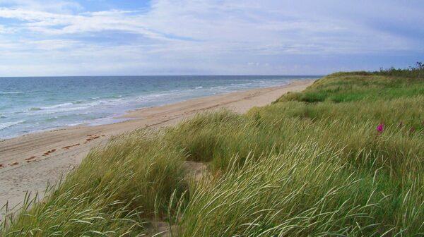 Hela Gotska sandön är en nationalpark – och här är naturen i sig den riktiga lyxen.