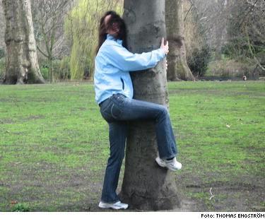 Amanda gjorde upp en sträng plan för sig själv - hon skulle inte besöka Träd mer och hon skulle ta ner de planscher på träd hon hade i sitt rum. Bilden är arrangerad.