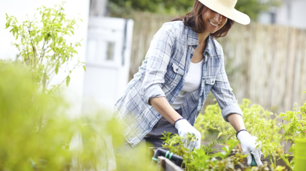 Yrkesodlare, trädgårdsrådgivare, forskare och författare med det allra senaste inom trädgård finns på plats för att dela med sig av sina tips.