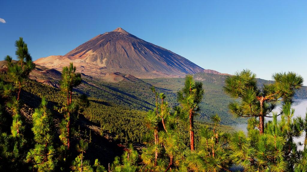 El Teide National Park, ett måste om du är på Teneriffa.