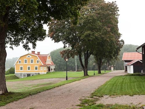 """""""När man kör av från stora vägen och ser hur huset tornar upp sig, pampigt och gult på en liten höjd får man gåshud"""", säger mäklaren Markus Elias."""