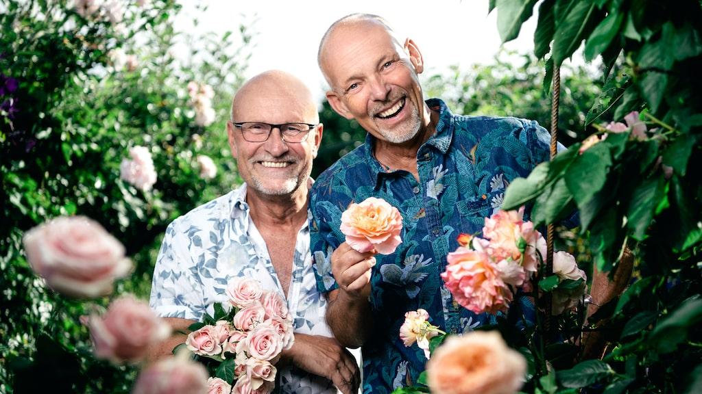 """Jürgen och Björn-Åke är två av alla vi får följa i Kanal 5:s nya program """"Paradiset Iris"""". I deras trädgård har de över 80 sorters rosor."""