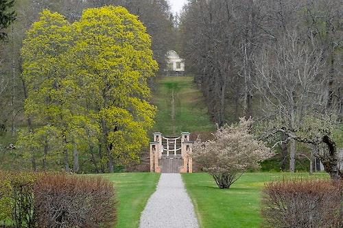 Lusthuset skymtar vid slutet av stigen i Engelska parken.