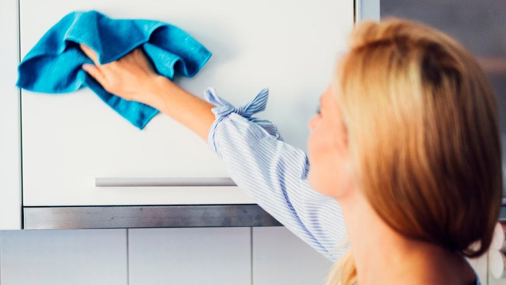 Vi vet att disktrasan är den största bakteriehärden i hemmet....