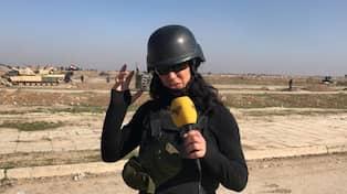 Kriget i irak striderna dag 3
