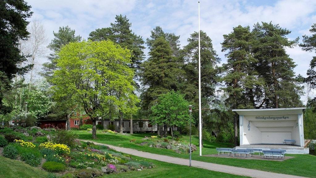Det är ofta på höstkanten, när loven faller och träden blottar sin stam, som samtal om träpenisar börjar komma in till kommunen i Hagfors.
