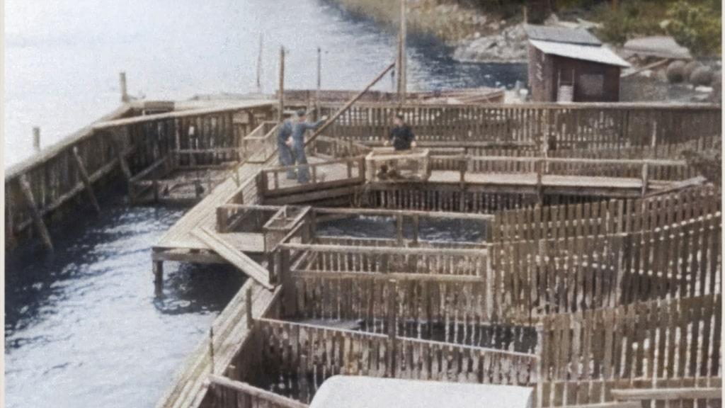 Anläggningen under 1940-talets första halva.