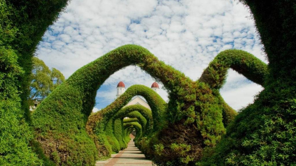 <p>Vacker trädgård i Chile.</p>