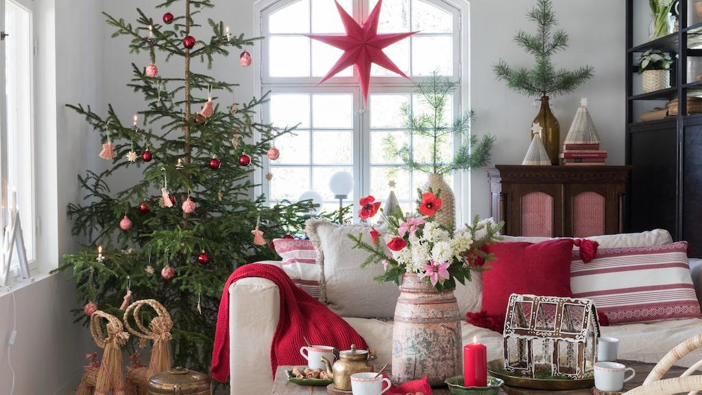 Ett pepparkakshus förgyller julen och sprider en härlig, stämningsfull doft.