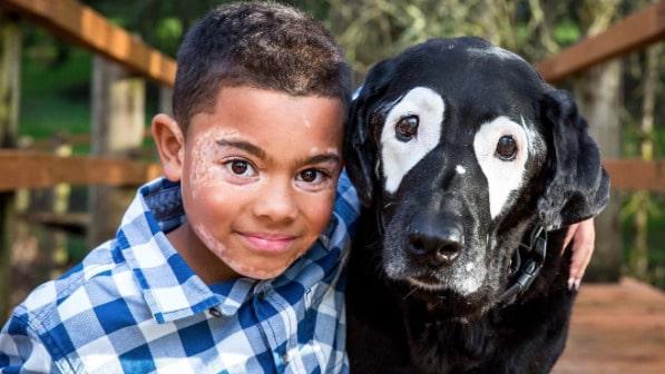 8-åriga pojken Carter och den 13-åriga labradoren Rowdy har blivit vänner.