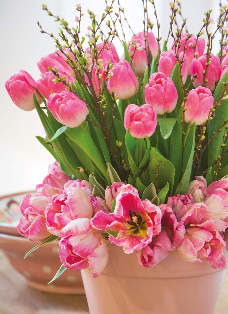 """Rosa blommor är vackra och betyder """"jag är föräskad i dig och lovar dig trohet""""."""