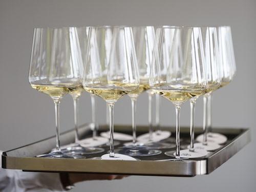 Får det lov att vara ett glas riesling? Druvan är känd som en av vinvärldens mest förstklassiga druvsorter.