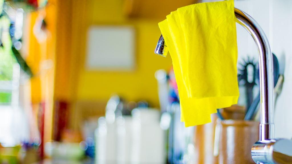 Disktrasan är en av de snuskigaste sakerna hemma och en riktig bakteriehärd. Men rätt skött kan du få den att hålla länge.