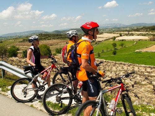 Cypern är perfekt för dig som älskar att ta dig runt på cykel.