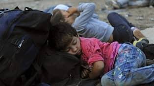 Delade meningar om eus flyktingkvot