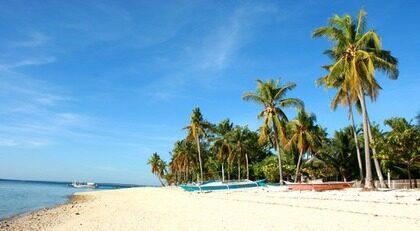 Malapascua är en liten ö, bara två kilometer bred och en kilometer lång. Lugnet härskar ännu, även om turisterna kommer i allt stridare strömmar.