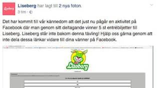 Liseberg varnas