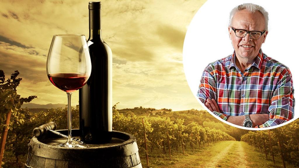 Håkan Larsson tipsar om två smakrika röda viner från franska Rhône.
