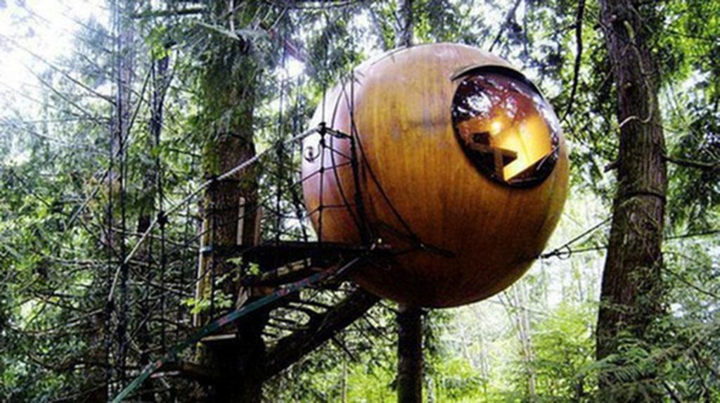 <p>På Free Spirit Spheres i Kanada blir du ett med naturen.<br></p>