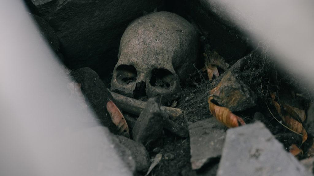 Utgrävd dödskalle placerad i en av Choquequirao-ruinernas gravar.