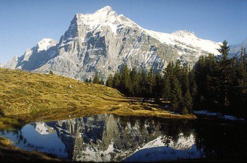 Grindewald, Schweiz.