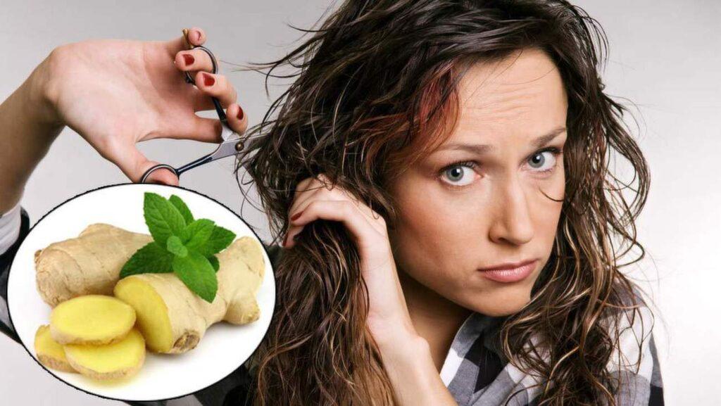 <p>Ingefära är packat av nyttiga ämnen - inte minst för ditt hår.</p>