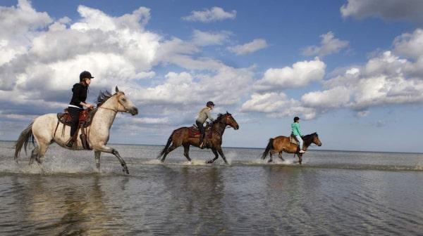Rid efter havet och i den underbara naturen.