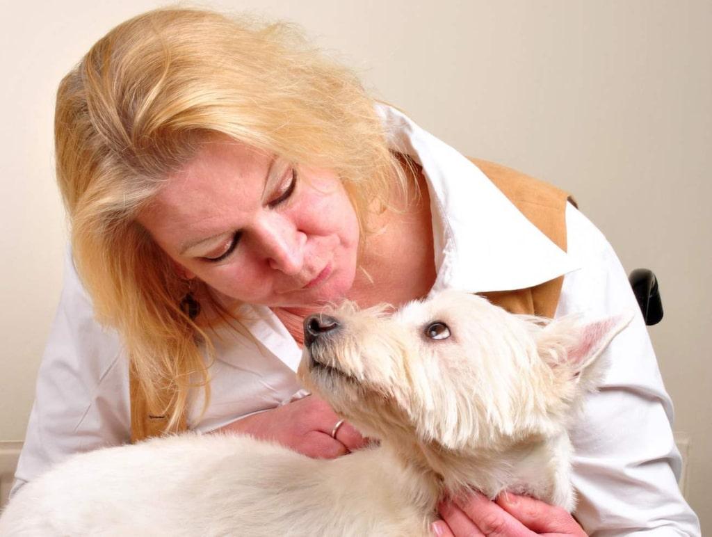 """<strong>11. Djurkommunikatör</strong><br>Kan du kommunicera med djur? Det finns en förening som heter """"Svenska Djurkommunitörsförbundet"""". De kan ge tips hur du går tillväga."""