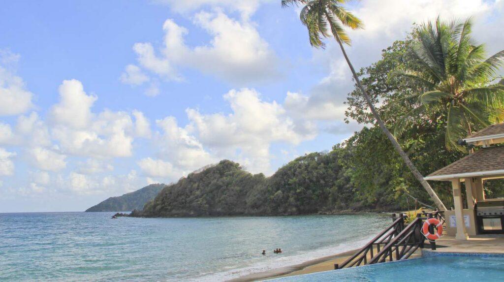 Vackra vyer. Tobago är naturälskarens dröm med grön djungel och fiskrikt hav.<br>På Blue Waters Inn trivs kolibrier och fågelskådare. De förstnämnda har egna matbord utanför hotellrummen.