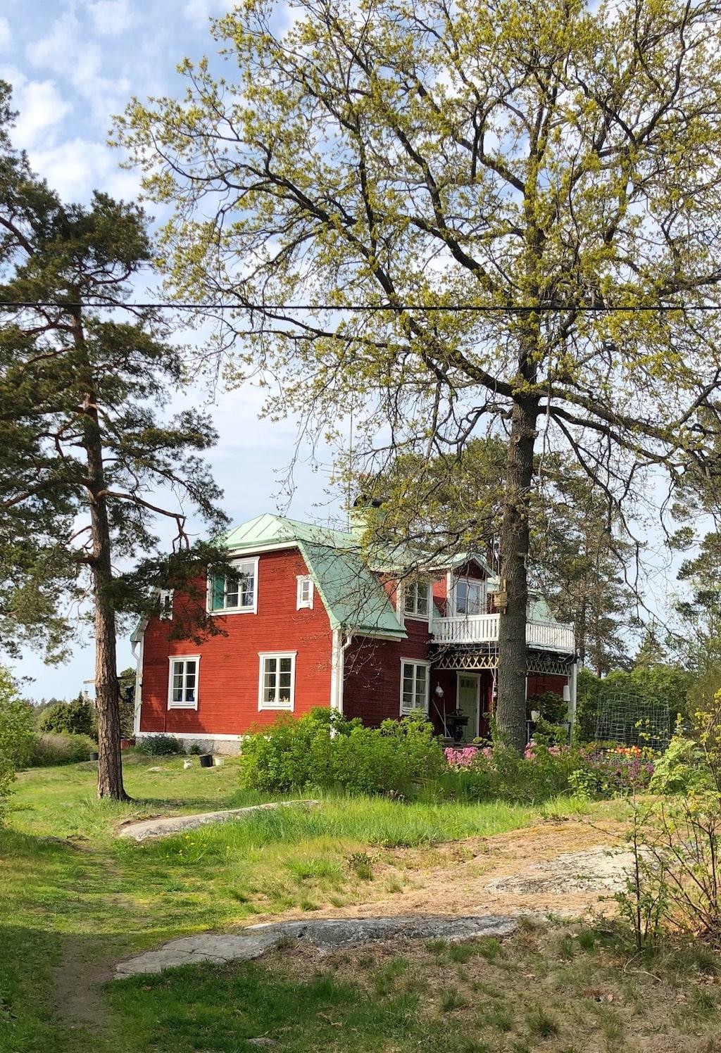 Ormarna gillar Elisabet och Peter Lidbrinks hus på Svartsö i Stockholms skärgård.