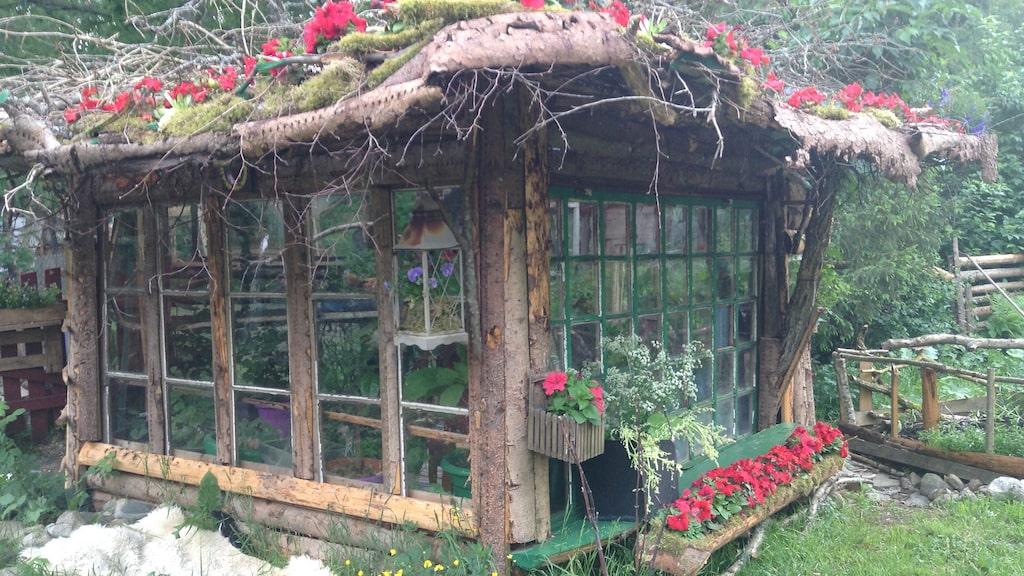 Eila tog vara på gamla fönster en person skänkte bort på Fackbook-sidan Marketplace och byggde ett litet hus av det.
