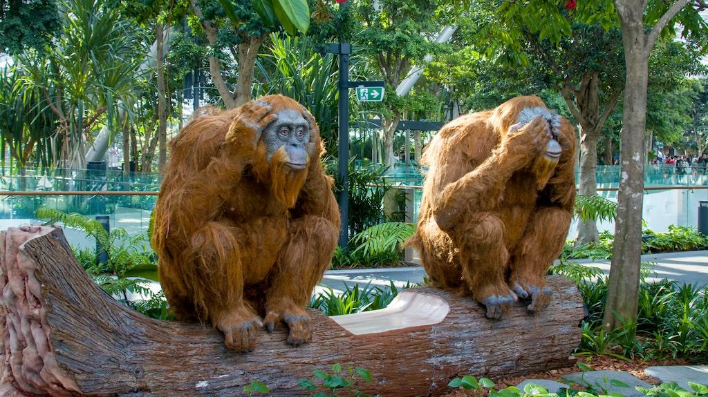 Orangutanger på Singapore flygplats.