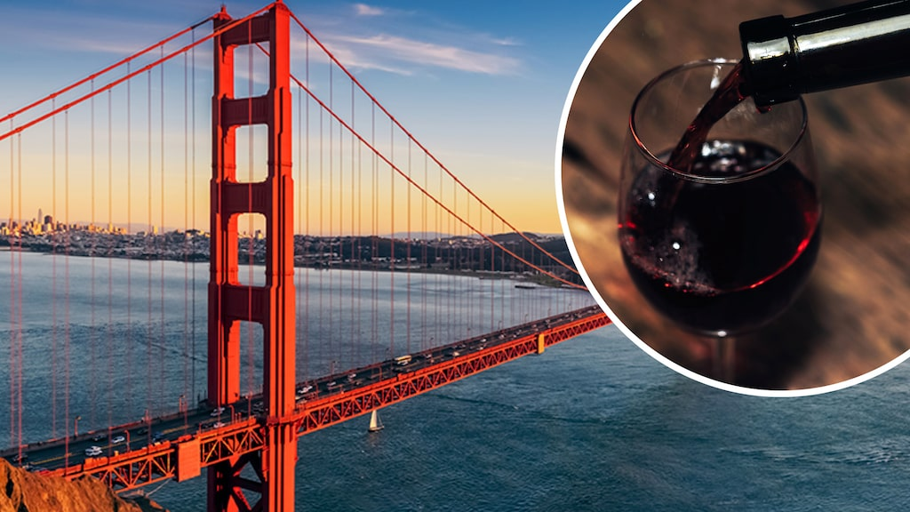 Strax utanför San Francisco frodas intresset för naturviner - som görs i vinerier mitt staden.