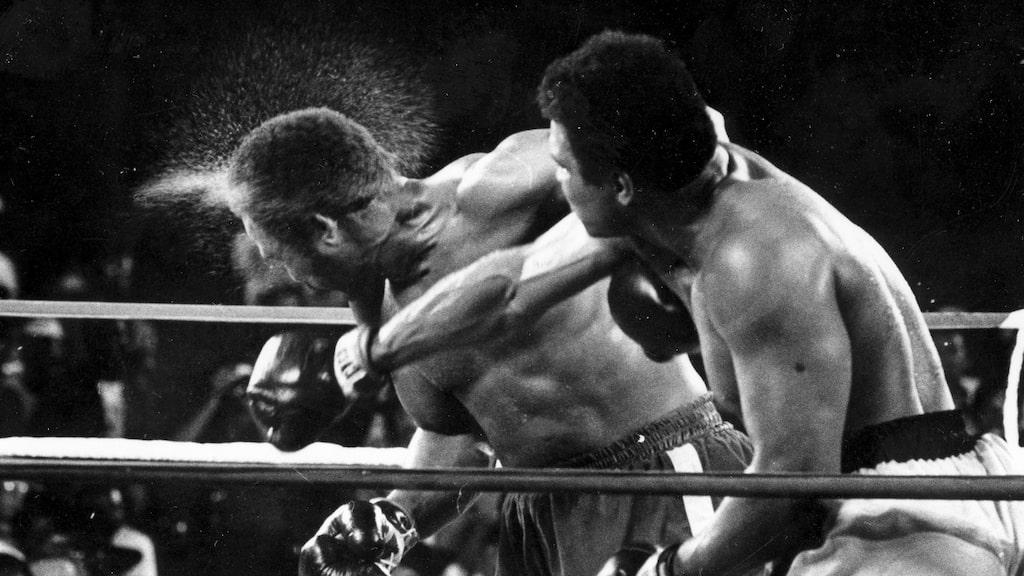 """""""The rumble in the jungle"""". Svettigt under den stenhårda matchen i Zaire 1974 när Muhammad Ali vann över regerande världsmästaren George Foreman i åttonde ronden."""