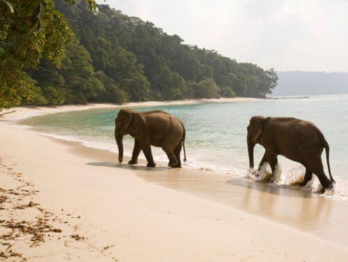 Havelock – Andamanerna.