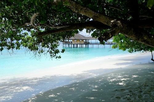 En av sammanlagt 75 öar som ingår i Baa Atoll.