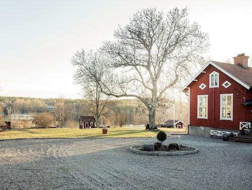 Huset har ett idylliskt läge med en tomt på drygt 4 500 kvadratmeter.