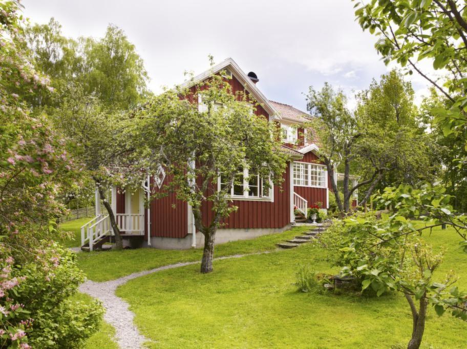 Huset ligger inbäddat i den lummiga uppvuxna trädgården omgiven av knotiga äppelträd.