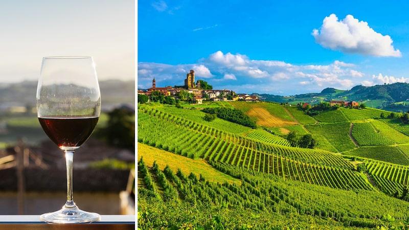 Piemonte är ett vindistrikt i norra Italien, känt för sina förstklassiga röda viner.